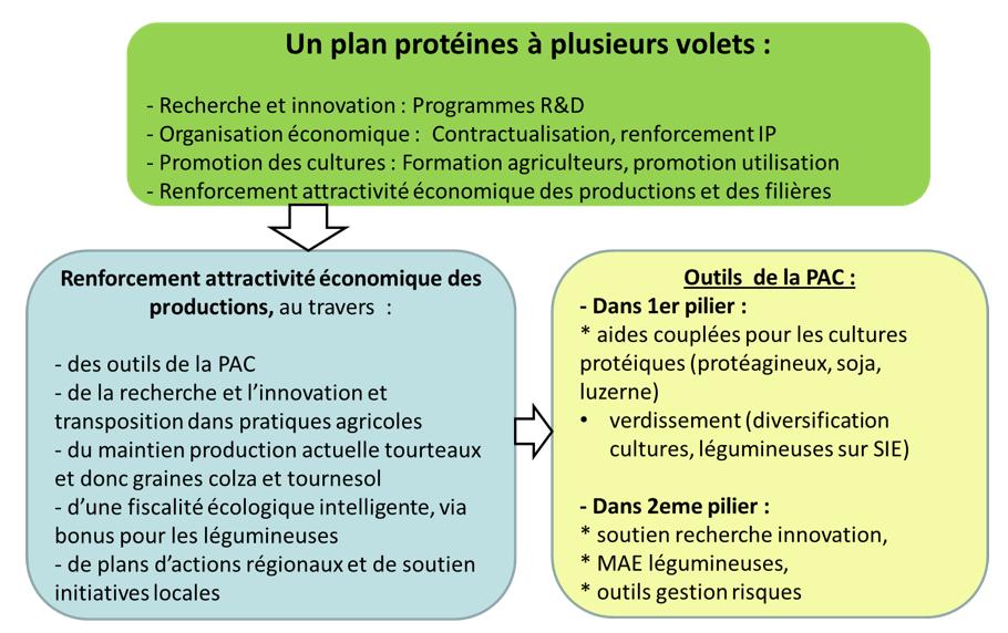 plan_proteines