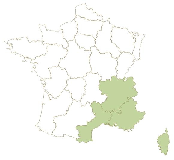 production olive France